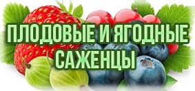 Купить плодовые и ягодные саженцы